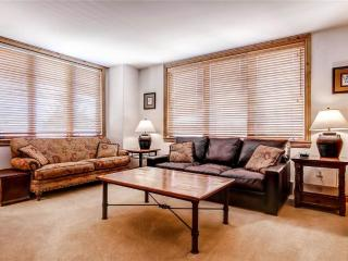 Torian Creekside 415 - Steamboat Springs vacation rentals