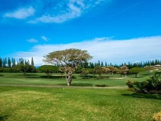16P7  Kapalua Golf Villa  2/2 Golf / Ocean View - Kapalua vacation rentals