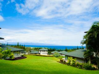Vacation Rental in Kapalua