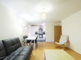 Handleys Ct, Apt 20- 2 Bed Large - Hemel Hempstead vacation rentals