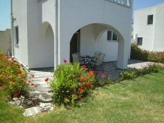 Lovely 1 bedroom Villa in Psinthos - Psinthos vacation rentals