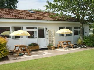 Sunny Bungalow with Balcony and DVD Player - Dawlish vacation rentals