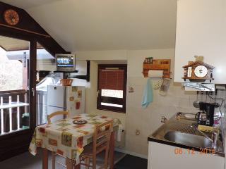 Appart 30 m² aux portes du Parc des Ecrins - Saint-Leger-les-Melezes vacation rentals