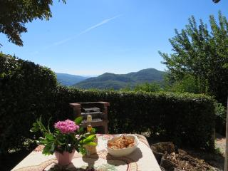 Florence countryside - Dicomano vacation rentals