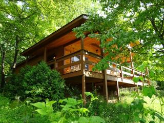 Spectacular 180 Smokey Mountain View - Whittier vacation rentals