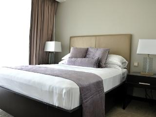 One bedroom serviced apartment in the Address Dubai Marina - Dubai Marina vacation rentals