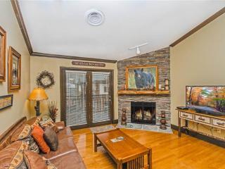 Baskins Creek 510 - Gatlinburg vacation rentals