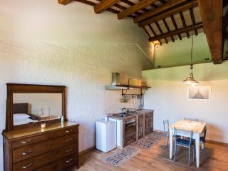 ABBAZIA SETTE FRATI - FRATRES Appartamento Felicis - Pietrafitta vacation rentals