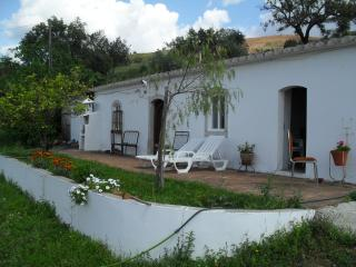 Traditional Algarve country house - Tavira vacation rentals