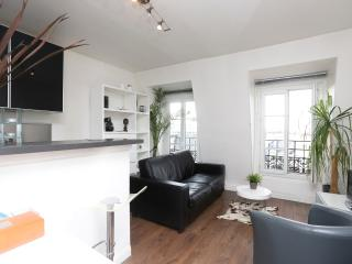 A DESIGN APARTMENT WITH OVERVIEW ON PARIS ROOF - Paris vacation rentals