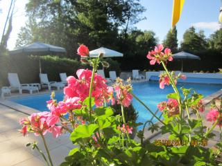 Nice Condo with Internet Access and Satellite Or Cable TV - Saint-Caprais de Blaye vacation rentals