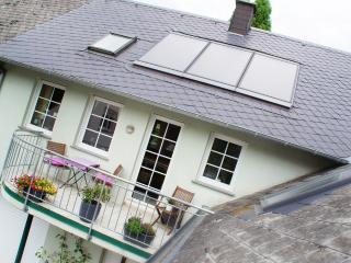 Winzernest - Ihr Lieblingsplatz an der Mosel - Mehring vacation rentals