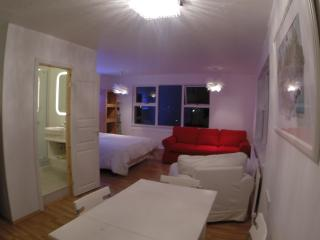 New studio with wonderful view, - Mosfellsbaer vacation rentals