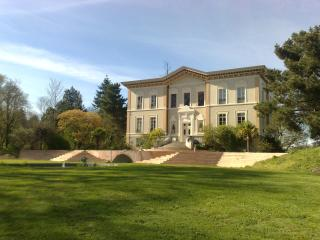 Domaine en exclusivité au Château de Bézyl - Sixt-Sur-Aff vacation rentals