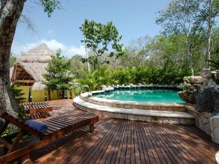 Beautiful Villa in Jungle Hideaway - Akumal vacation rentals
