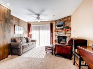 Lodge at Mountain Village 217 - Park City vacation rentals