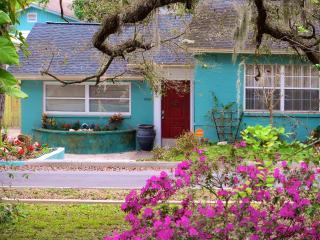Busch Gardens, Convention Center & River House - Tampa vacation rentals
