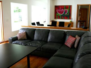 Bright House with Internet Access and A/C - san luis potos vacation rentals