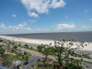 Lovely Waterfront Condo at Legacy Towers - Gulfport vacation rentals