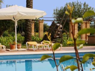 Finca Flor - Buger vacation rentals