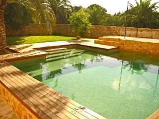 Finca Sa Mirada - Buger vacation rentals