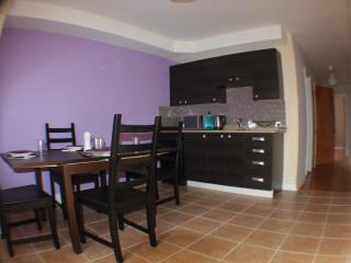 1 bedroom Condo with Internet Access in Westmount - Westmount vacation rentals