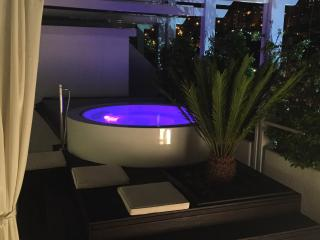 Luxury Deluxe Penthouse apartment in Dubrovnik - Dubrovnik vacation rentals