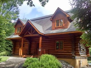 Moon Over Moose Luxury Waterfront Log Home Max 10 - Old Forge vacation rentals