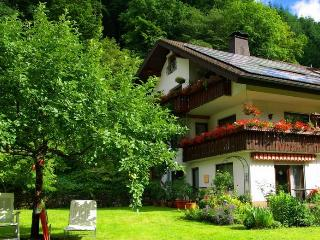 Vacation Apartment in Muenstertal -  (# 8577) - Muenstertal vacation rentals
