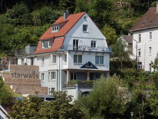 Nice Condo with Internet Access and Balcony - Schramberg vacation rentals
