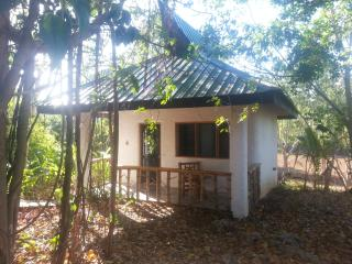 Kims-Garden jungle cottage - Anda vacation rentals