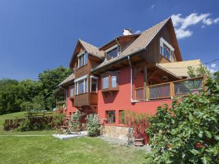 Near Budapest 6 rooms, pool, panorama - Zebegeny vacation rentals
