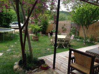 CHARMANTE MAISON DE VILLAGE AVEC JARDIN - Nyons vacation rentals