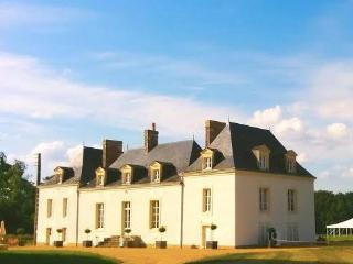 Beautiful 9 bedroom Malicorne-sur-Sarthe Chateau with Internet Access - Malicorne-sur-Sarthe vacation rentals