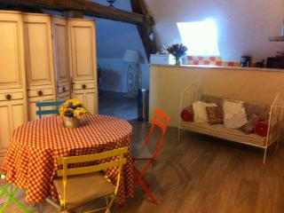 Nice Condo with Internet Access and Central Heating - Beaugency vacation rentals