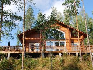 Villa Kokkis - luxury villa with own sauna&hottub - Taavetti vacation rentals