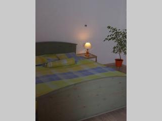 Apartment in the country - Trutnov vacation rentals