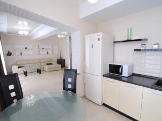 Elite 2 bedroom+living room  in the center Ismail - Chisinau vacation rentals