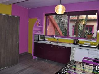 Charmant studio RdC donnant sur jardin à partager - Collioure vacation rentals