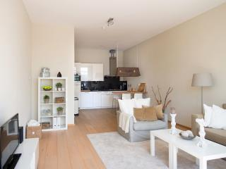 1 bedroom Apartment with Internet Access in The Hague - The Hague vacation rentals
