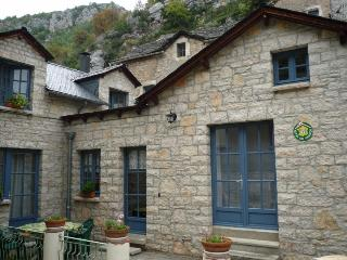 Nice Gite with Internet Access and Outdoor Dining Area - La Malene vacation rentals