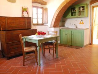 Delizioso monolocale nel verde - San Casciano in Val di Pesa vacation rentals
