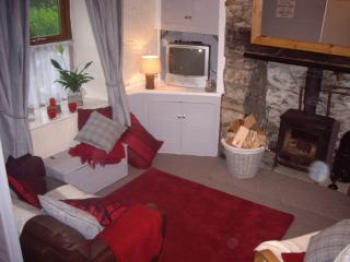 Perfect 1 bedroom Cottage in Beddgelert - Beddgelert vacation rentals