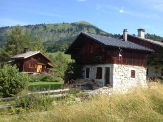 Nice Ski chalet with Internet Access and Dishwasher - Samoëns vacation rentals