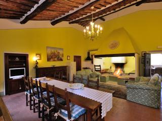 Beautiful  tuscan Villa not far from Siena 18 pax - Siena vacation rentals