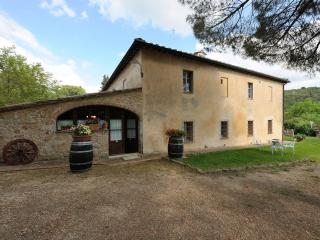 Apartment Camilla, countryside, not far from Siena - Siena vacation rentals
