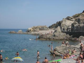 Apartment of 40 m² in Collioure - Collioure vacation rentals