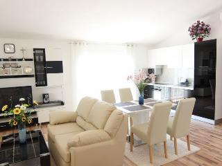 Luxury apartment for 6+2 people - Vir vacation rentals