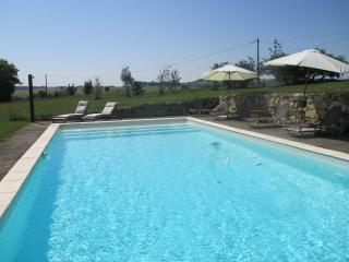 Maison de Maître with pool set in 6 hectares - Terraube vacation rentals