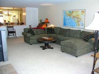 2 Bedroom, 2 Bathroom Vacation Rental in Solana Beach - (SONG9) - Solana Beach vacation rentals